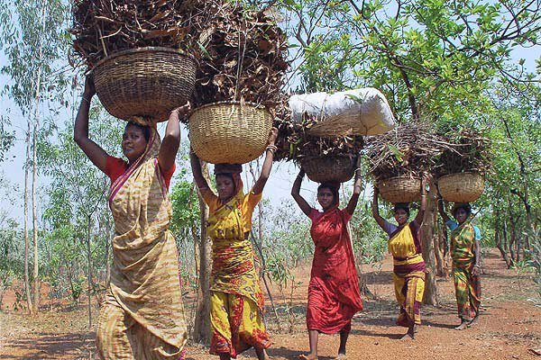 পশ্চিমবাংলায় তপশীলি উপজাতির তালিকা (List of Scheduled Tribe in West Bengal)।